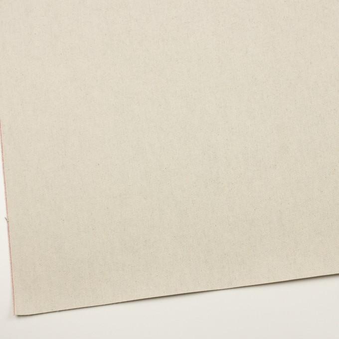 コットン×無地(ベージュグレー)×セルビッチ・カツラギ イメージ2