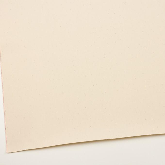 コットン×無地(キナリ)×セルビッチ・カツラギ イメージ2