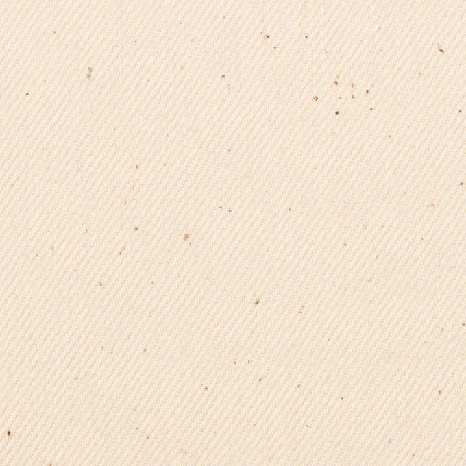 コットン×無地(キナリ)×セルビッチ・カツラギ イメージ1