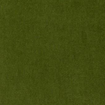 コットン×無地(フォレストグリーン)×ベッチンワッシャー_全5色 サムネイル1