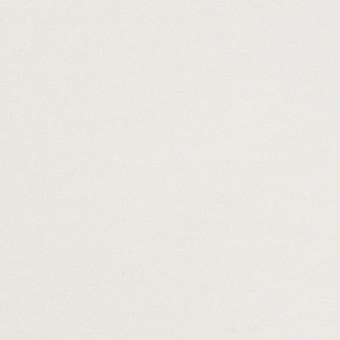 コットン&ポリウレタン×無地(ホワイト)×裏毛ニット サムネイル1