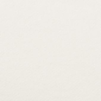 コットン×無地(オフホワイト)×裏毛ニット(裏面起毛) サムネイル1