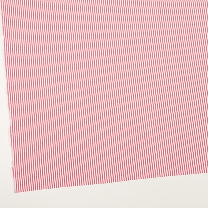 コットン×ストライプ(レッド)×ブロード イメージ2