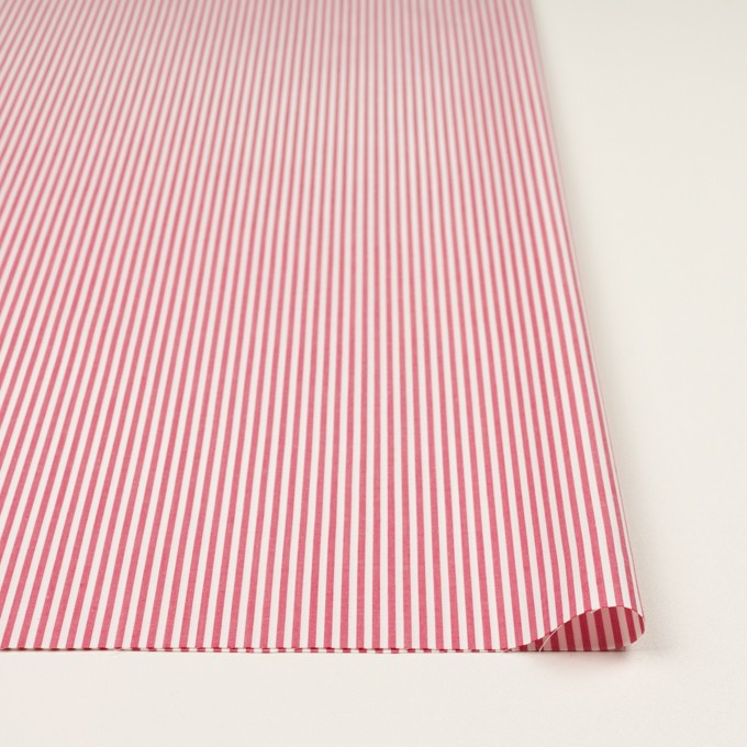コットン×ストライプ(レッド)×ブロード イメージ3