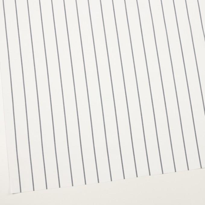 コットン&ポリエステル×ストライプ(ホワイト&ネイビー)×ブロード イメージ2