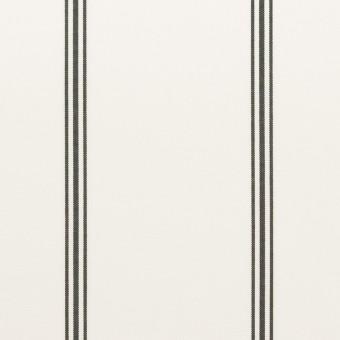 コットン×ストライプ(ホワイト&ブラック)×ローン
