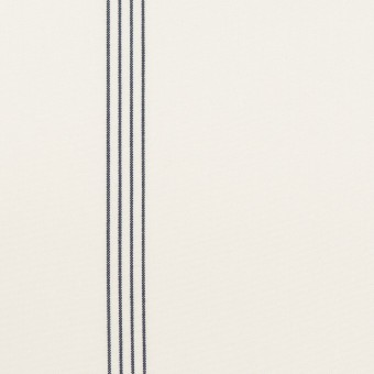 コットン&テンセル×ストライプ(オフホワイト&ネイビー)×ブロード