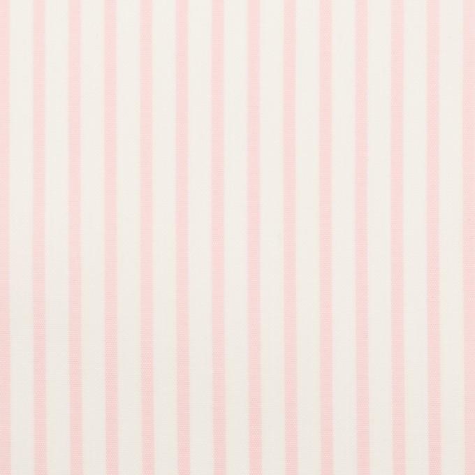 コットン&ポリウレタン×ストライプ(ベビーピンク)×ブロードストレッチ イメージ1