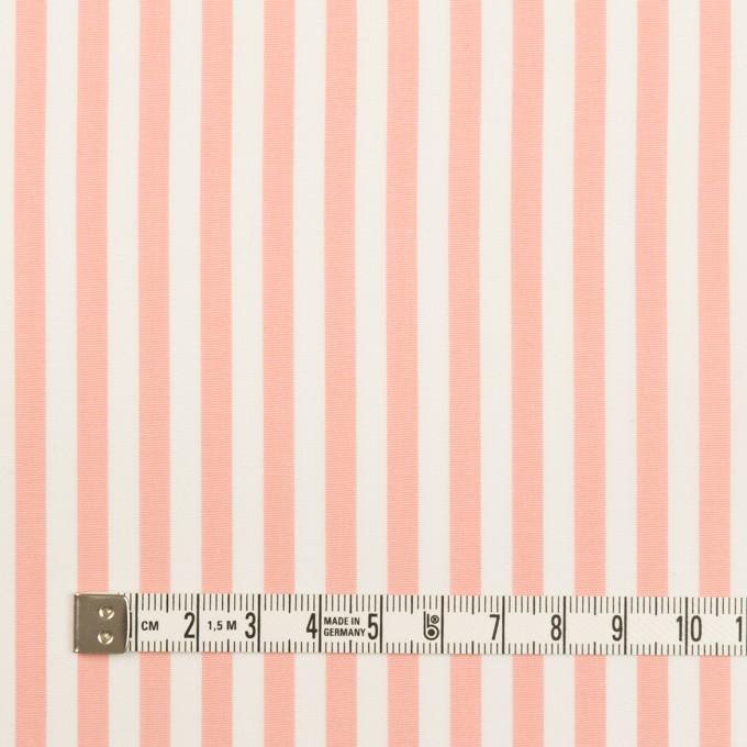コットン×ストライプ(コーラルピンク)×ブロード イメージ4