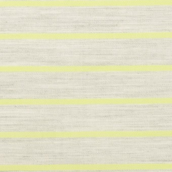 コットン×ボーダー(杢グレー&イエローグリーン)×ローンジャガード サムネイル1