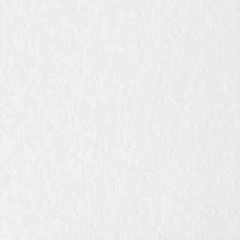 コットン×無地(ホワイト)×裏毛ニット サムネイル1