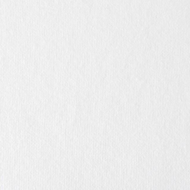 コットン×無地(ホワイト)×裏毛ニット イメージ1