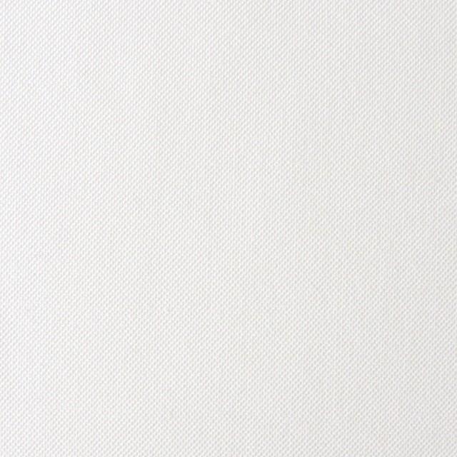 コットン×無地(オフホワイト)×オックスフォード_全2色 イメージ1