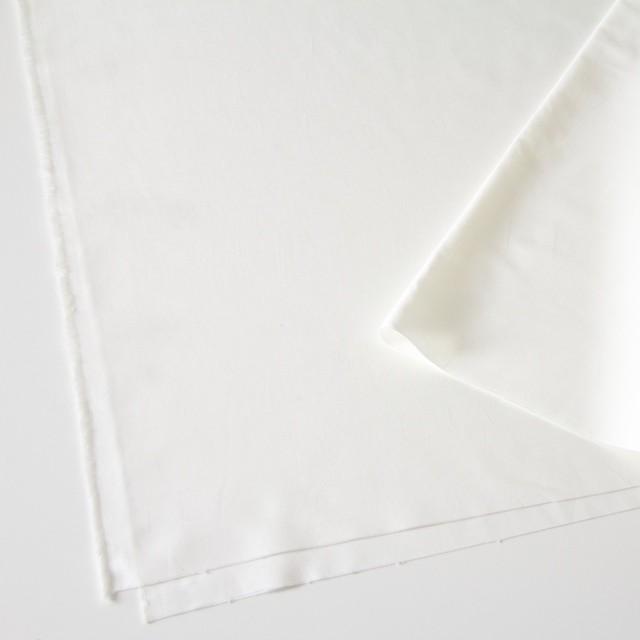 コットン×無地(オフホワイト)×オックスフォード_全2色 イメージ2