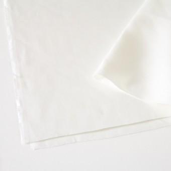 リネン×無地(オフホワイト)×カツラギ サムネイル2
