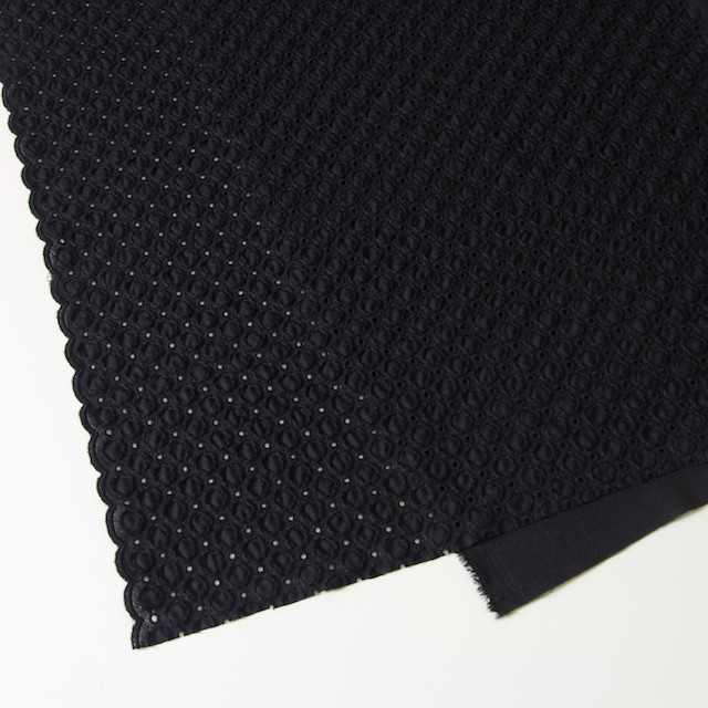 コットン&ポリエステル×無地(ブラック)×ジョーゼット刺繍 イメージ2