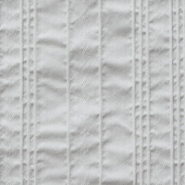 コットン&ナイロン混×ストライプ(ライトグレー)×ピンタックジャガード_全2色 イメージ1