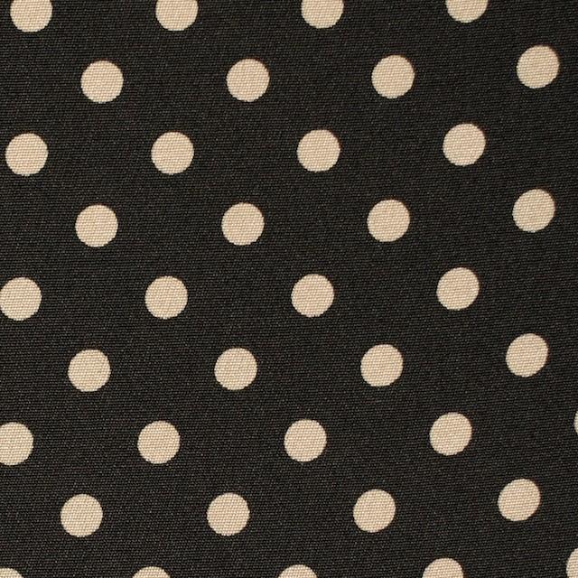 シルク×水玉(アイボリー×ブラック)×デシン イメージ1