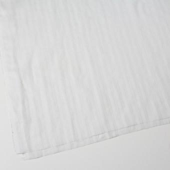 リネン×無地(ホワイト)×からみ織 サムネイル2