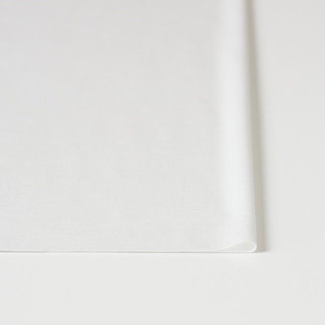 モダール&コットン×無地(オフホワイト)×スムースニット イメージ3