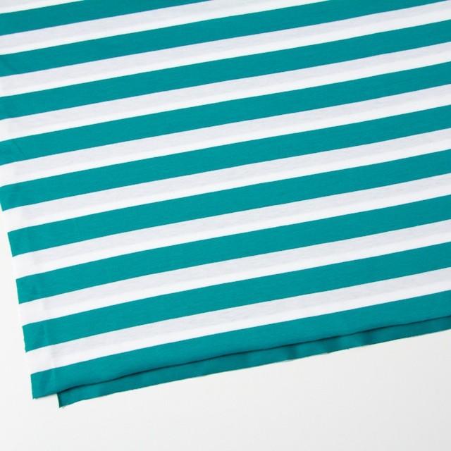 コットン×ボーダー(エメラルドグリーン)×天竺ニット_全3色 イメージ2
