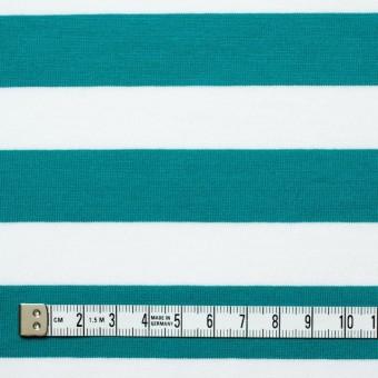 コットン×ボーダー(エメラルドグリーン)×天竺ニット_全3色 サムネイル4
