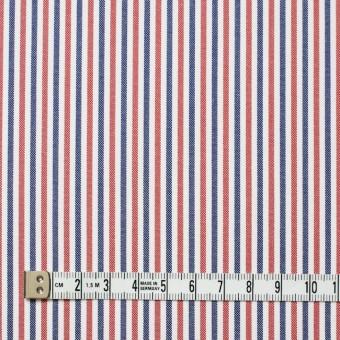 コットン×ストライプ(トリコロール)×オックスフォード_全3色 サムネイル4