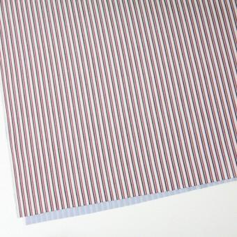 コットン×ストライプ(トリコロール)×二重織 サムネイル2