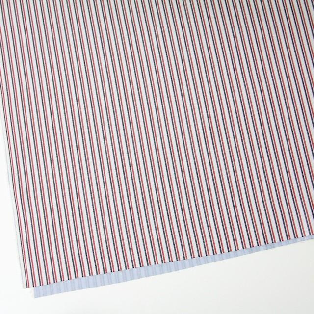 コットン×ストライプ(トリコロール)×二重織 イメージ2