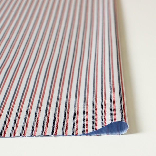 コットン×ストライプ(トリコロール)×二重織 イメージ3