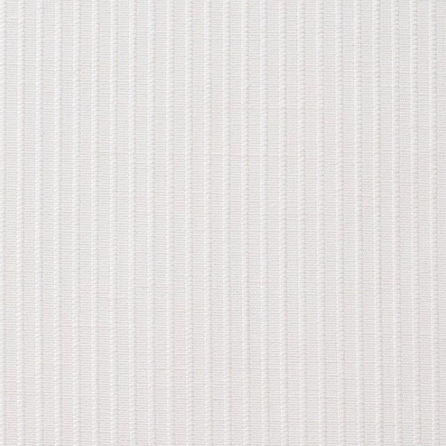 コットン&リネン×ストライプ(オフホワイト)×コードレーン_全5色 イメージ1