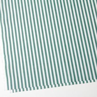 コットン×ストライプ(モスグリーン)×ブロード_全5色 サムネイル2