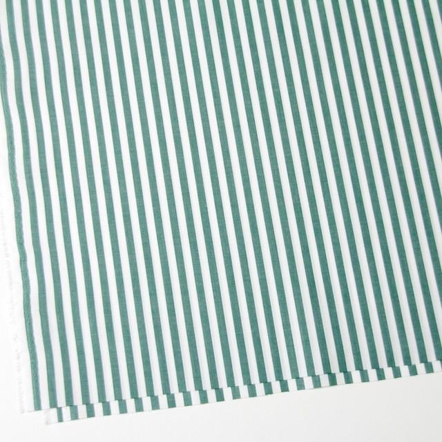コットン×ストライプ(モスグリーン)×ブロード_全5色 イメージ2