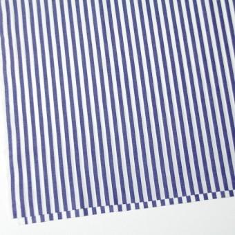 コットン×ストライプ(スレートブルー)×ブロード_全5色 サムネイル2