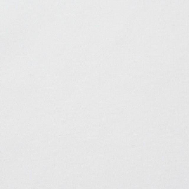 コットン×無地(ホワイト)×ローン イメージ1