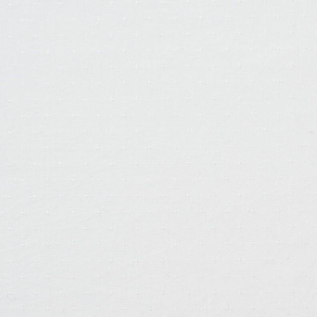 コットン×無地(ホワイト)×ローンジャガード イメージ1