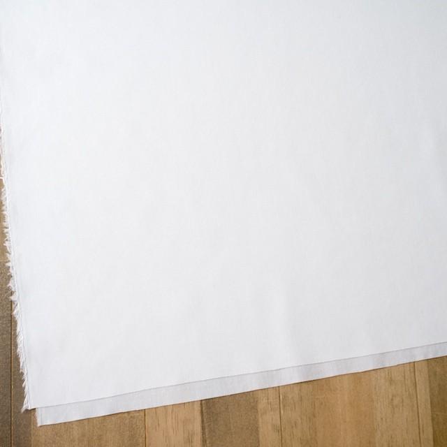 コットン×無地(ホワイト)×ローンジャガード イメージ2
