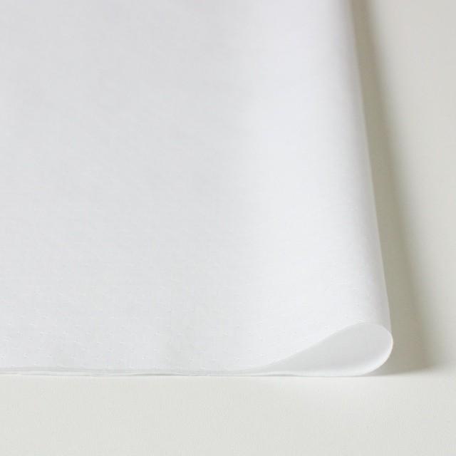 コットン×無地(ホワイト)×ローンジャガード イメージ3