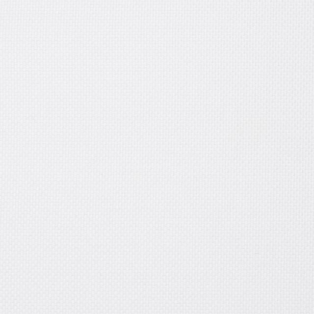 コットン×無地(ホワイト)×オックスフォード イメージ1