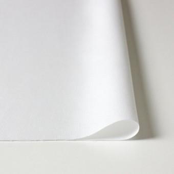 コットン×無地(ホワイト)×オックスフォード サムネイル3