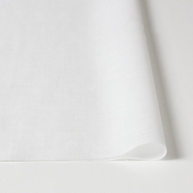 コットン×フラワー(オフホワイト&ブラック)×ボイル刺繍 イメージ3