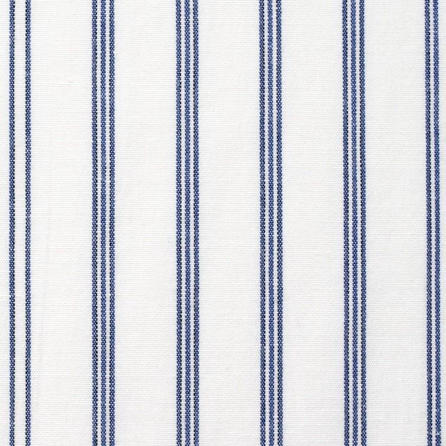 コットン×ストライプ(オフホワイト&ブルー)×ブロード イメージ1