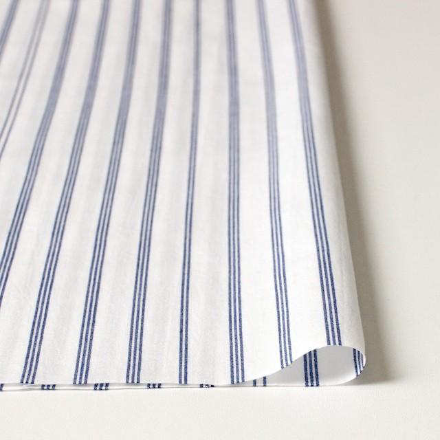 コットン×ストライプ(オフホワイト&ブルー)×ブロード イメージ3