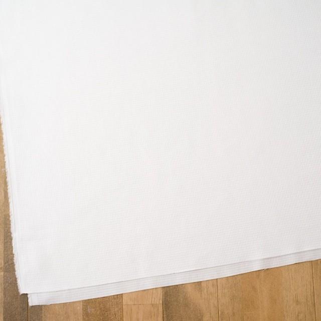 コットン×無地(オフホワイト)×かわり織 イメージ2