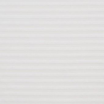 コットン×ボーダー(オフホワイト)×ボイルジャガード サムネイル1
