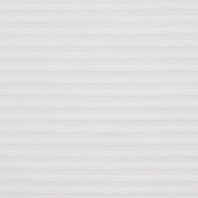 コットン×ボーダー(オフホワイト)×ボイルジャガード イメージ1