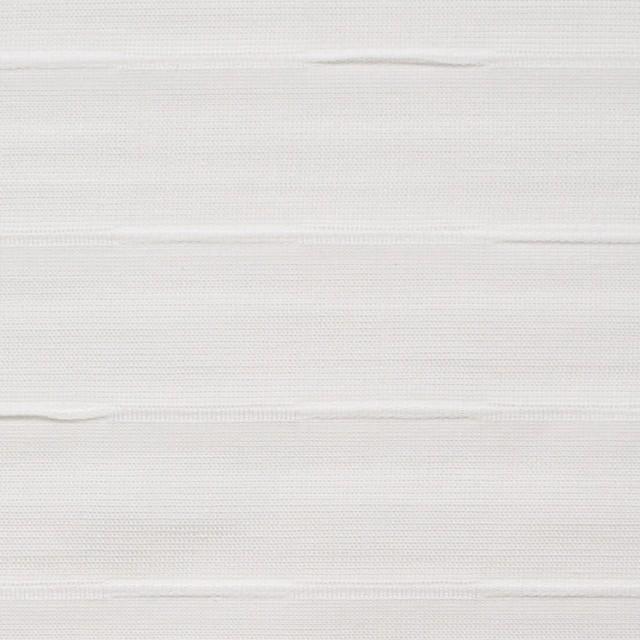 コットン×ボーダー(オフホワイト)×ボイルピンタック イメージ1