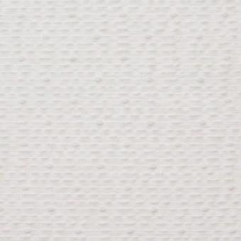 コットン&ポリエステル×ボーダー(オフホワイト)×コードレーン サムネイル1