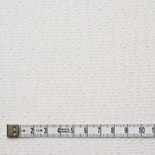コットン&ポリエステル×ボーダー(オフホワイト)×コードレーン イメージ4