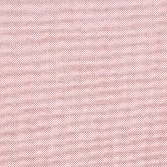 コットン×無地(ローズピンク)×オックスフォード・シャンブレー イメージ1